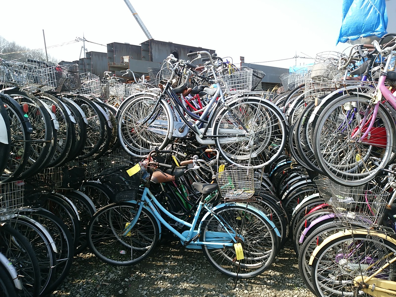 Used Bicycle Export